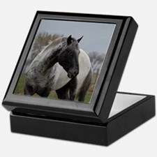 Appaloosa Stallion Keepsake Box