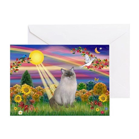 Autumn Sun / Ragdoll Greeting Card