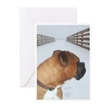 Gibson Sympathy Cards (Pk of 20)