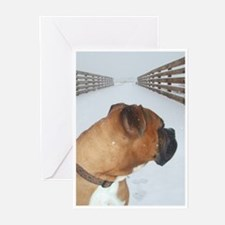 Gibson Sympathy Cards (Pk of 10)