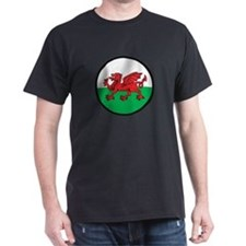Welsh Island T-Shirt