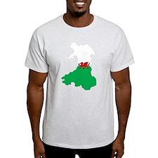 Welsh Island Flag Map T-Shirt
