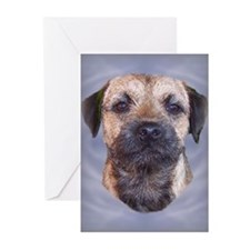 Border Terrier Head Study Greeting Cards (Package