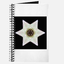 Dogwood Blossom I Journal