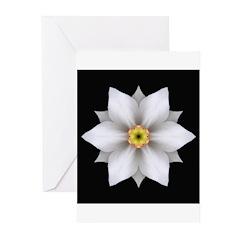 Daffodil II Greeting Cards (Pk of 10)