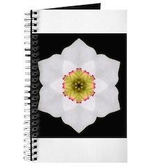 Daffodil I Journal