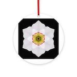 Daffodil I Ornament (Round)