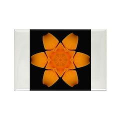 Orange Daylily I Rectangle Magnet