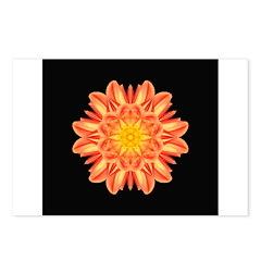 Orange Dahlia I Postcards (Package of 8)
