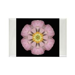 Lavender Pink Peony I Rectangle Magnet