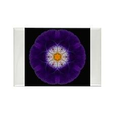 Iris II Rectangle Magnet