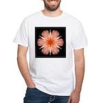 Salmon Daylily White T-Shirt