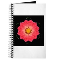 Dahlia Hybrid I Journal
