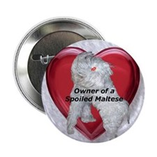 Owner of a spoiled Maltese Button