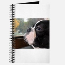 Cute French bulldogs Journal