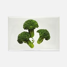 Broccoli Rectangle Magnet