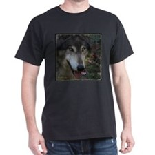 Grey Wolf: Ingo Black T-Shirt