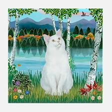 Birches / (White) Cat Tile Coaster