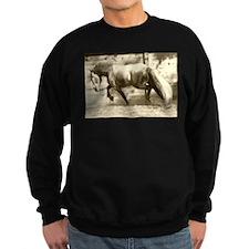 Friesian Sweatshirt