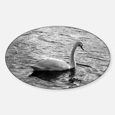 Swan One Oval Decal
