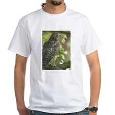 Sharp Shinned Hawk Shirt