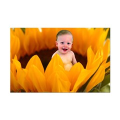 Sunflower Baby Posters