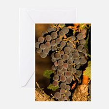 Grapes 2 Greeting Cards (Pk of 10)