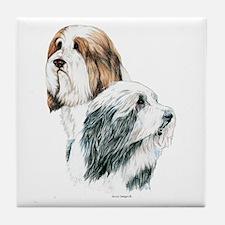 Bearded Collies, Beardie dogs Tile Coaster
