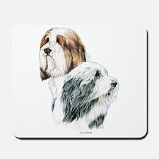Bearded Collies, Beardie dogs Mousepad