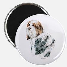 Bearded Collies, Beardie dogs Magnet