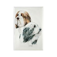 Bearded Collies Rectangle Magnet (100 pack)