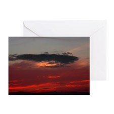 """Cozumel """"Night Dive"""" Greeting Cards (Pk of 10)"""