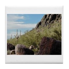 """Arizona Desert"" Tile Coaster"