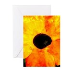 Beautiful Orange Flower Greeting Cards (6)