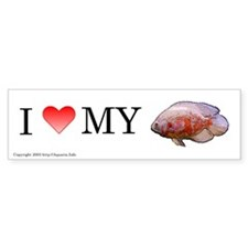 I Love My Albino Oscar Bumper Bumper Sticker