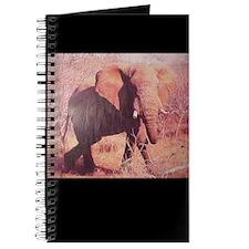 Rogue Elephant Journal