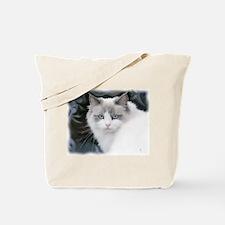 Funny Cat dreams Tote Bag