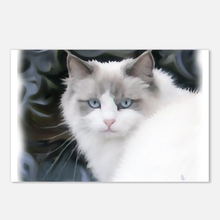 Cute Ragdoll cat Postcards (Package of 8)