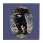 Romping Rottweiler Puppy Tile Coaster