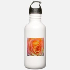 Ombre Rose Water Bottle