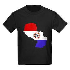 Paraguay Flag Map T