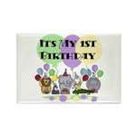 Zoo 1st Birthday Rectangle Magnet (10 pack)