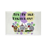Zoo 3rd Birthday Rectangle Magnet (10 pack)