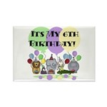 Zoo 6th Birthday Rectangle Magnet (10 pack)