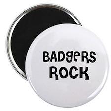 BADGERS ROCK Magnet