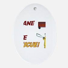 Shane to the Rescue Oval Ornament