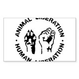 Animal liberation 10 Pack