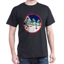 Santa Disc Golf Christmas T-Shirt