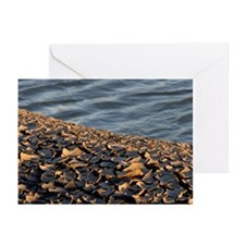 Crackle Beach Greeting Cards (Pk of 10)