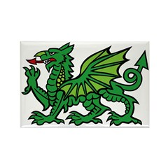 Midrealm Dragon Rectangle Magnet (10 pack)